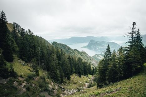 Blick aus der Zahnradbahn oberhalb Aemsigen am Pilatus_Fotograf_Twintheworld
